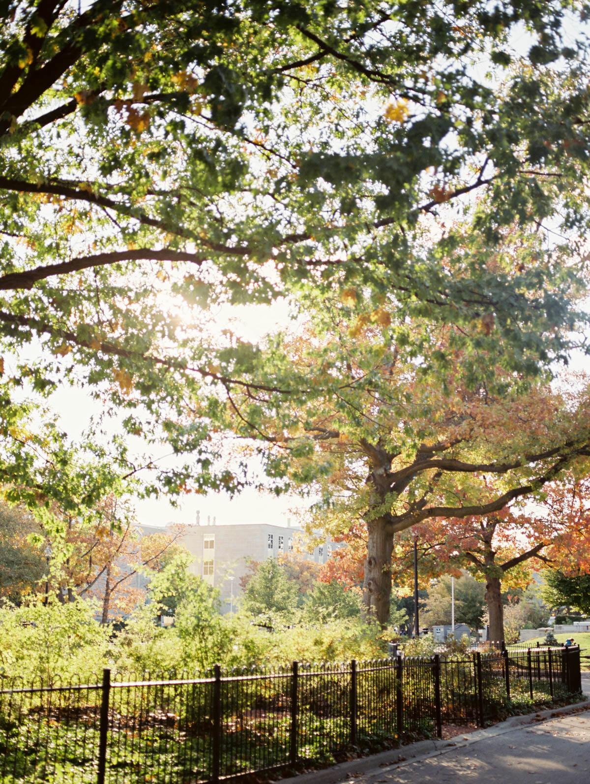 fall scene at mcmaster