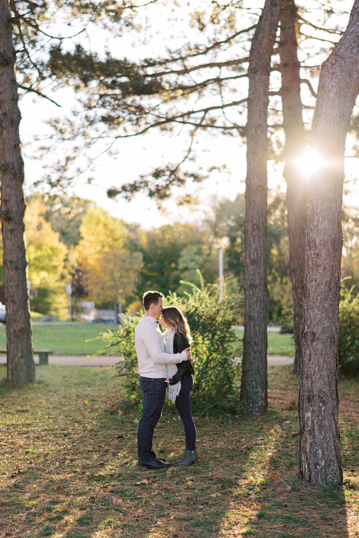 sun shining through the trees during the engagement session